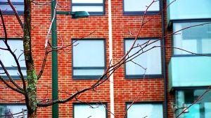 Vuokrakodin ikkunoita Kouvolassa.