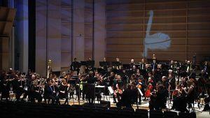 Tampere-talo, Sibelius-konsertti, Tampere Filharmonia