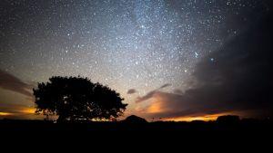Yöllinen taivas kuvattuna timelapsena.