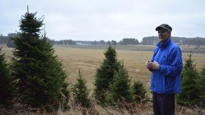 Hannu Ojala kasvattaa yhdessä sukulaismiehensä Saku Uotilan kanssa joulukuusia Kärkölässä.