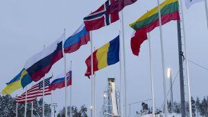 Rukan mäki ja lippuja