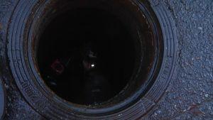 Viemärisukeltaja kaivossa