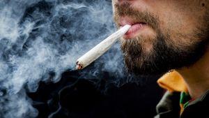 Mies polttaa kannabista.