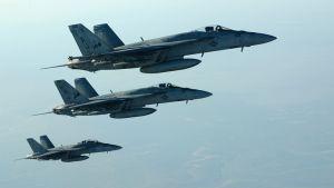 Kolme Hornet hävittäjää ilmassa.