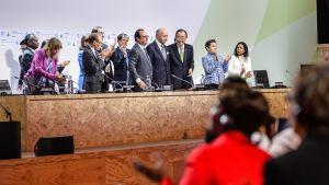 Pariisin ilmastokokous 12. joulukuuta.