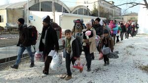 Syyriasta, Irakista ja Afganistanissa lähteneitä pakolaisia saapui rekisteröintikeskukseen torstaina Serbian Presevossa.