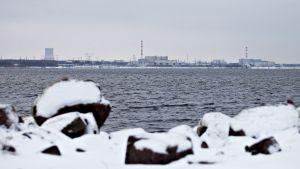 Sosnovy Borin ydinvoimala