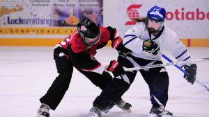 Kanada ja Suomi vuoden 2013 MM-kisoissa.