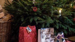 Joulukuusen alla lahjoja.