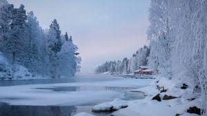 Vesa Laukan ottama maisemakuva Kajaanin Kalkkisillalta.