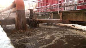 Isosta putkesta tulvii ruskeaa jätevettä hyöryävään altaaseen