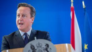 David Cameron puhuu. Britannian pääministerillä on tummanharmaa puku, ruudukas kauluspaita, sinervä kravatti. Cameron seisoo puhujankorokkeen takana. Korokkeessa on Yhdistyneen kuningaskunnan vaakuna harmaalla pohjalla. Taustalla näkyy kaksi lippua, joista toinen saattaisi olla Britannian lippu ja toinen on EU:n lippu.