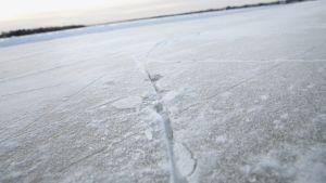 Luonnonjää ei ole koskaan täysin tasainen, vaikka Kemijoen reitti onkin tammikuussa hyvässä kunnossa.