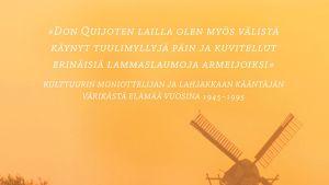 Jyrki Lappi-Seppälä: Tuulimyllyjä päin -kirjan kansi