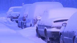 Turvapaikanhakijoiden käyttämiä autoja Sallan raja-asemalla 23.1.2016
