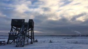 Konnunsuon lintotornia ympäröi luminen peltomaisema.