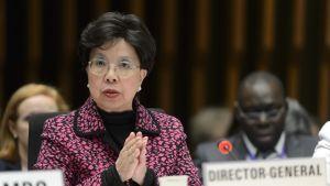 WHO:n pääjohtaja  Margaret Chan tiedotti tänään zikaviruksesta.