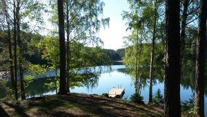 Kesäinen kuva tyynelle järvelle