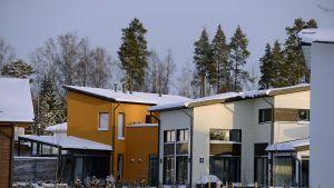 Asuntoja Vantaan Kivistössä 14. tammikuuta 2016.