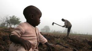 13-kuukautinen lapsi leikkii maassa ja taustalla hänen isänsä kuokkii maata.