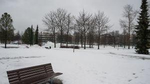 Maria Jotunin puiston alue Kuopiossa.