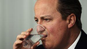 Britannin pääministeri David Cameron