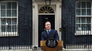 Pääministeri David Cameron Downing Street 10 edessä.