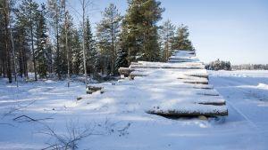 Lumen peittämä puupino metsätien varrella