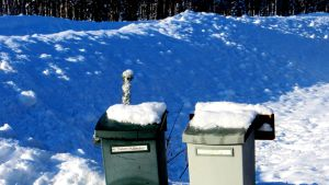 Postilaatikkojen lumi sulaa