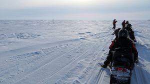 Moottorikelkkaletka Perämeren jäällä