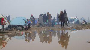 Telttoja ja ihmisiä suuren vesilätäkön takana.