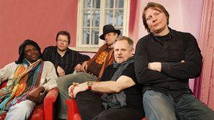 Piirpauke-yhtye