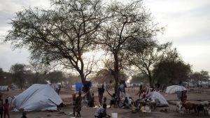 Ihmisiä askareissa telttojen ja pressusta rakennettujen suojien ympärillä.