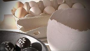 Kuvassa kananmunia kennossa, maalattuja munia astiassa.