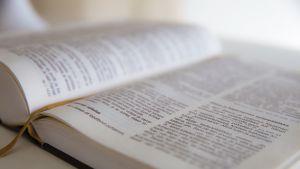 Raamatun aukeama.