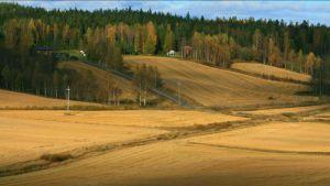 Viisarimäen - Rutalahden maisema-alueen näkymää.