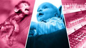 Kuvakollaasi apinasta, vauvasta ja lääkehyllystä.