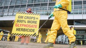 Greenpeacen edustajat osoittavat mieltään Eu-komission edessä glysofaatteja vastaan.
