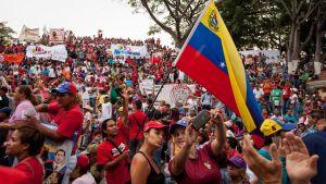 Hallituksen tukijoiden mielenosoitus pääkaupungissa Caracasissa huhtikuussa 2016.