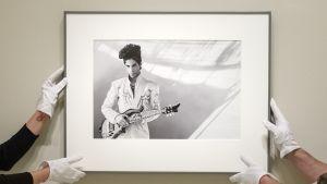 Neljä kättä pitelee kehystettyä Princen kuvaa