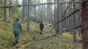 Kaksi miestä metsässä