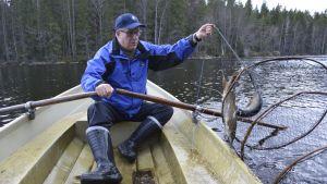 Hannu Tukia nostaa kalasaalista mökkijärvestä.