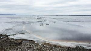 Nuasjärven rantaa Terrafamen purkuputken kohdalta.