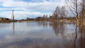 Maalahdenjoki 28. huhtikuuta 2016