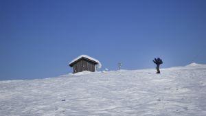 Hiihtäjä lumisessa maastossa.