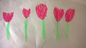 Äitienpäiväkortissa kukkivia tulppaaneja.