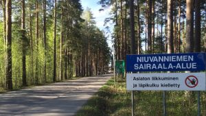 Näkymä Niuvanniemen lähistöltä Kuopiosta.