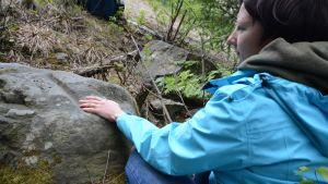 Maakunta-arkeologi Tanja Tenhunen tutkii Juankoskelta, Muuruveden Putaansaaresta löytynyttä rautakauden muinasjäännöstä.