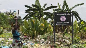 Koria päänsä päällä kantava nainen ohittaa kyltin, jossa varoitetaan, että alue on saastunut ja sieltä pitää pysyä poissa. Maassa lojuu tyhjiä muovipulloja, pahvipakkauksia ja muuta roskaa.