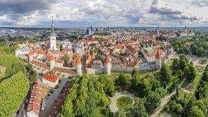 Muurit ympäröivät edelleen Tallinnan keskiaikaista vanhaakaupunkia.